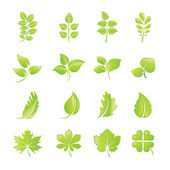 Set of green leaf icons — Stock Vector
