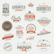 set van vintage badges en elementen — Stockvector