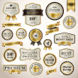 Set luxury labels and ribbons — Stock Vector #19077347