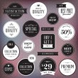 Set of luxury labels and badges — Stock Vector #20074535