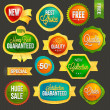 Set of badges and labels — Stock Vector #21342337