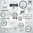 Set luxury silver labels and ribbons — Stock Vector