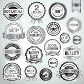 Set of luxury silver badges and stickers — Stock Vector