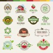 Set of badges and stickers for organic products — Stock vektor