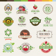 Stock Vector: Set of badges and stickers for organic products