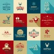 Set of elements for Christmas and New Year greeting cards — Vecteur