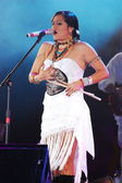 Snger Lila Downs — Foto de Stock