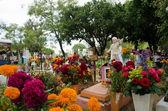Gravar dekorera med blommor — Stockfoto