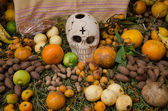 Mexican day of the dead offering altar — Foto Stock