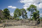 Cantona. Archaeological site in México — Stock Photo