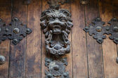 Ancient decorative lion knocker — Stock Photo