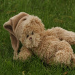 Teddy bear lying on the green grass — Stock Photo