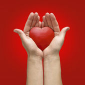 Woman hands holding heart — Stock Photo