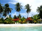Island Maldives — Stock Photo