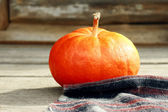 Large pumpkin — Stock Photo