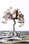 Money tree — Foto Stock