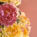 Handmade flower fabric — Stock Photo #33699283