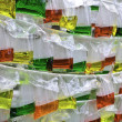 Color water in the translucent plastic bag — Stock Photo