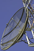 Satellite dish on a telecommunications tower — Stock Photo