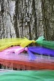 Heiliger baum mit multicolor-gewebe — Stockfoto