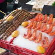 Fresh shrimps — Stock Photo #12062713