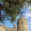 Carcassonne castle towers — Stock Photo #27044407