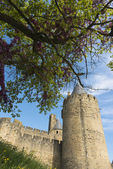 Carcassonne castle towers — Stock Photo