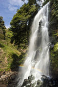Azores,  Nordeste.  Ribeira Grande waterfall — Stock Photo