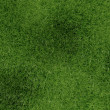3d green grass background texture. - Stock Photo