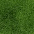 3d green grass background texture — Stock Photo