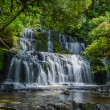 Purakaunui Falls, The Catlins, south island of New Zealand. Beautiful stairway waterfall. — Stock Photo