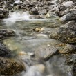 A shallow stream in the wild — Stock Photo