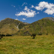 Meadow landscape panorama - Rob Roy Track, New Zealand - Stock Photo