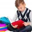 Boy with books — Stock Photo #17376415