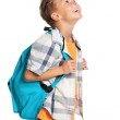 Boy with backpack — Stock Photo #19514307