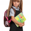 Little girl with exercise books — Stock Photo #50562929