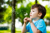 Cute boy with dandelion outdoors — Stock fotografie