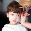 Haircut of little boy — Stock Photo #24872053