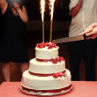 Stock Photo: Close up of bride and groom cutting wedding cake