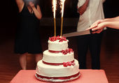 Close up of bride and groom cutting wedding cake — Stock Photo