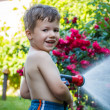 Little boy watering — Stock Photo
