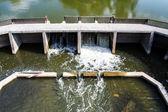 Sewage at flood gate — Stock Photo