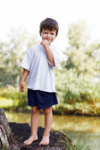 Little boy standing on trunk at lake — Stockfoto