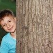 Little boy hide-and-seek — Stock Photo