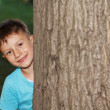Stock Photo: Little boy hide-and-seek