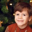 Little boy with christmas tree — Stock Photo