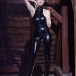 Stock Photo: Sexy dominatrix posing on timber