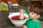 Four year old caucasian boy eating cherry — Stock Photo