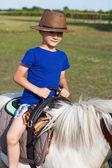 Litt boy ride on pony — Stockfoto