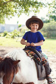 Little kid in hat on pony — Stock fotografie